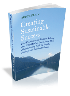 Creating Sustainable Success, by Bruce Elkin.